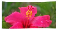 Bath Towel featuring the photograph Garden Rains by Miguel Winterpacht