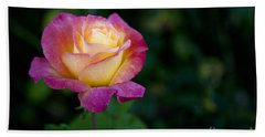 Garden Tea Rose Hand Towel by David Millenheft