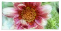 Treasure Flower Gazania Hand Towel by Louise Kumpf