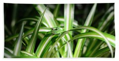 Gecko Camouflaged On Spider Plant Hand Towel by Connie Fox
