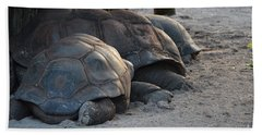 Hand Towel featuring the photograph Giant Tortise by Robert Meanor