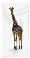 Hand Towel featuring the photograph Giraffe by Charles Beeler
