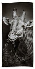 Giraffe Eating Hand Towel