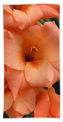Gladiola In Peach Hand Towel