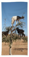 Goats In A Tree Hand Towel