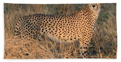 Golden Cheetah At Sunset Bath Towel