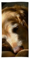 Golden Retriever Dog Sleeping In The Morning Light  Hand Towel by Jennie Marie Schell
