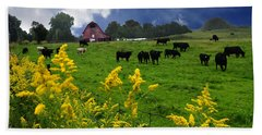 Golden Rod Black Angus Cattle  Hand Towel
