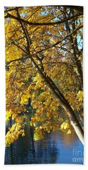 Hand Towel featuring the photograph Golden Zen by Chalet Roome-Rigdon