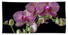 Gorgeous Orchids Hand Towel