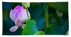 Bath Towel featuring the photograph Graceful Lotus. Pamplemousses Botanical Garden. Mauritius by Jenny Rainbow