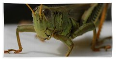 Grasshopper Hand Towel by Dan Sproul
