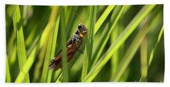 Grasshopper In Grass Hand Towel