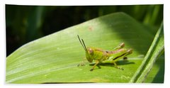 Grasshopper On Corn Leaf   Bath Towel