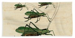 Grasshopper Parade Hand Towel by Antique Images