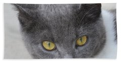 Gray Cat - Listening Bath Towel by Tine Nordbred