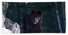 Gray Or Timber Wolf Canis Lupus Hand Towel