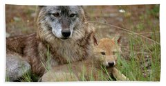 Gray Wolf With Pup Hand Towel
