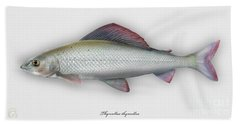 Grayling - Thymallus Thymallus - Ombre Commun - Harjus - Flyfishing - Trout Waters - Trout Creek Bath Towel