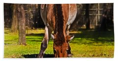Grazing With An Attitude Hand Towel