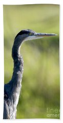 Great Blue Heron Backlit Bath Towel by Sharon Talson