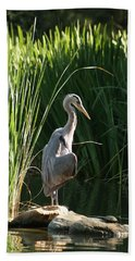 Great Blue Heron Hand Towel by Ellen Henneke