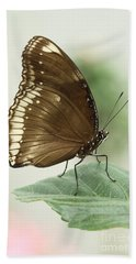 Great Eggfly Butterfly Hand Towel by Judy Whitton