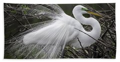 Great Egret Preening Bath Towel
