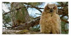 Great Horned Owls Hand Towel