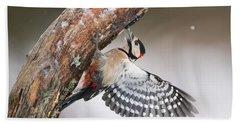Great Spotted Woodpecker Male Sweden Bath Towel