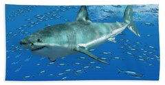 Great White Shark Bath Towel