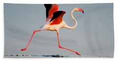 Greater Flamingo Phoenicopterus Roseus Bath Towel