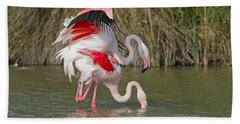 Greater Flamingos Mating Bath Towel