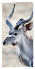 Greater Kudu Tragelaphus Strepsiceros Bath Towel