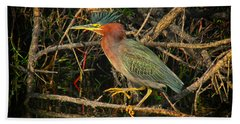 Green Heron Basking In Sunlight Bath Towel