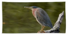 Green Heron Hand Towel by Doug Herr