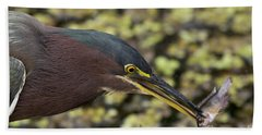 Green Heron Fishing Bath Towel