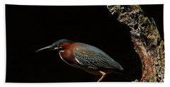 Green Heron Hand Towel