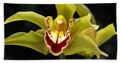Green Orchid Flower Hand Towel