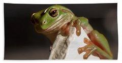 Green Tree Frog Keeping An Eye On You Hand Towel