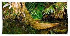 Green Turtle Chelonia Mydas In A Pond Bath Towel
