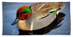 Green Winged Teal  Duck  Hand Towel