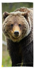 Grizzly Hand Towel
