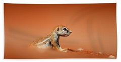 Ground Squirrel On Red Desert Sand Hand Towel