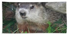 Groundhog Hiding In His Cave Hand Towel by John Telfer