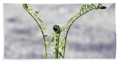 Growing  Hand Towel by Kerri Farley