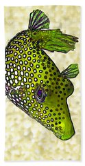 Guinea Fowl Puffer Fish In Green Bath Towel by ABeautifulSky Photography