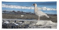 Bath Towel featuring the photograph Seagull  by Eunice Miller