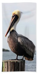 Handsome Brown Pelican Hand Towel