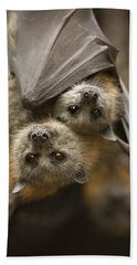 Hang In There Hand Towel by Mike  Dawson